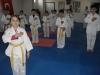 unye-taekwondo-devam