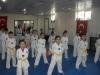 unye-taekwondo-devam1