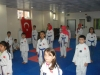 unye-taekwondo-devam3