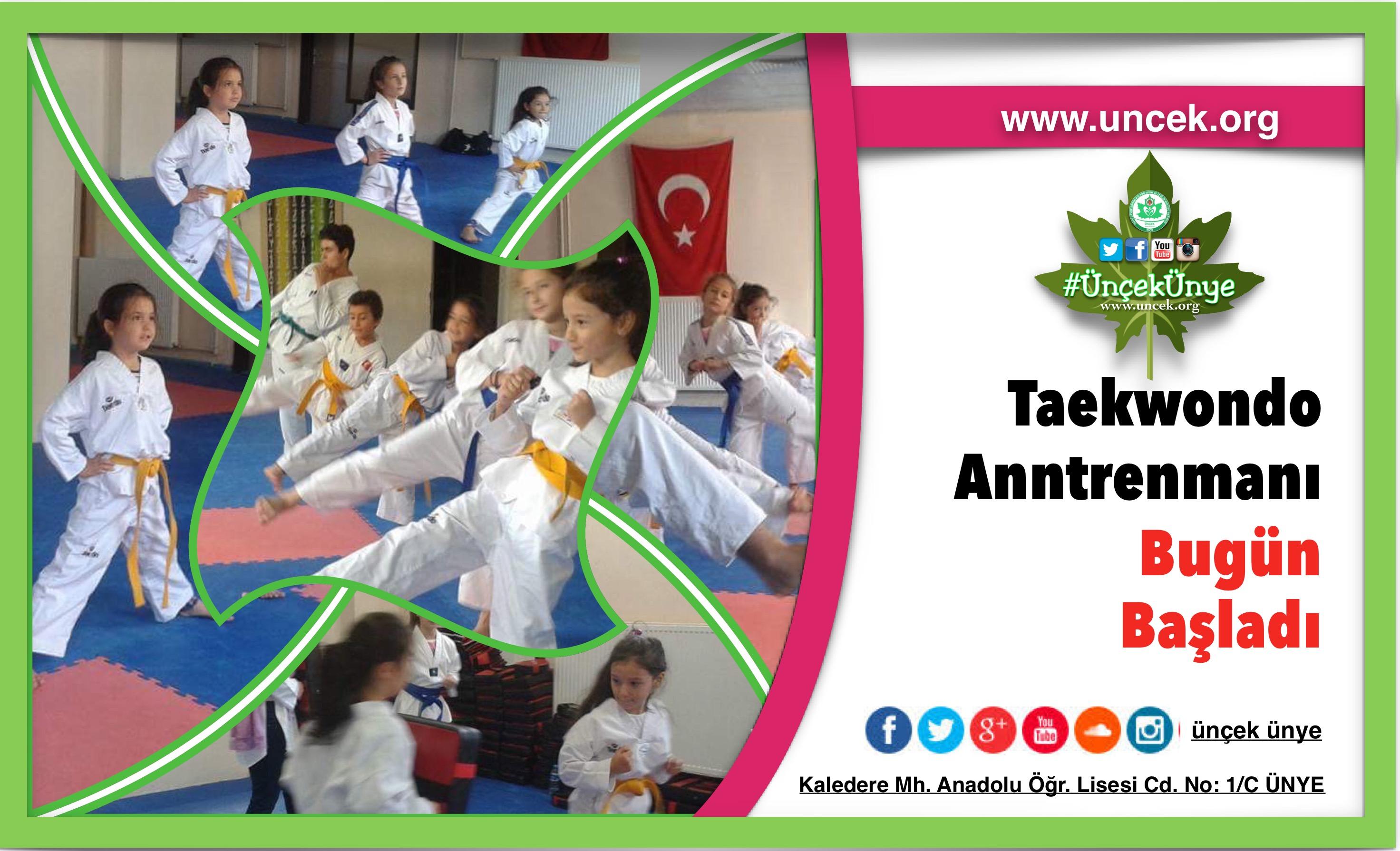 Yeni Dönem Taekwondo Antrenmanları Başladı